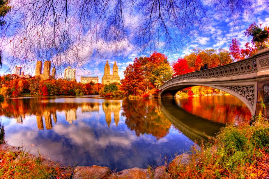 экскурсия по Центральному Парку Нью-Йорка 22