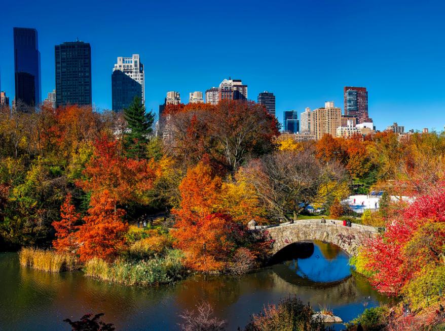 экскурсия по Центральному Парку Нью-Йорка free 1