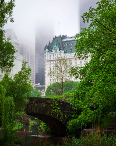 экскурсия по Центральному Парку Нью-Йорка free 3