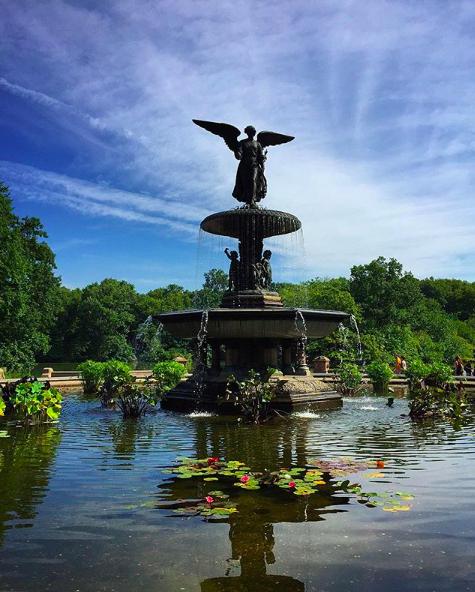 экскурсия по Центральному Парку Нью-Йорка free 8
