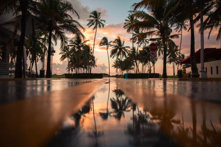 экскурсия в Майами free 2