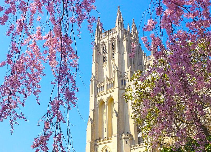 Кафедральный Собор Вашингтона free 7