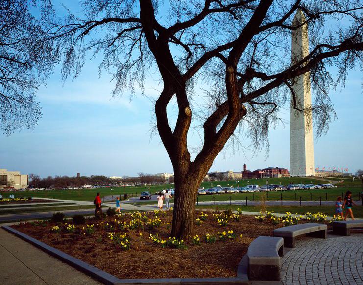 Национальная аллея Вашингтон free 6