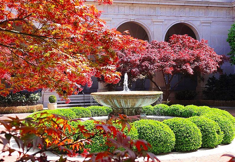 Вашингтонская Национальная Галерея Искусств free 1