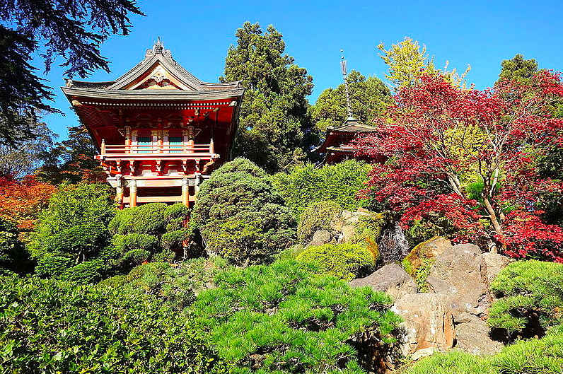 Японский Чайный Сад free 2