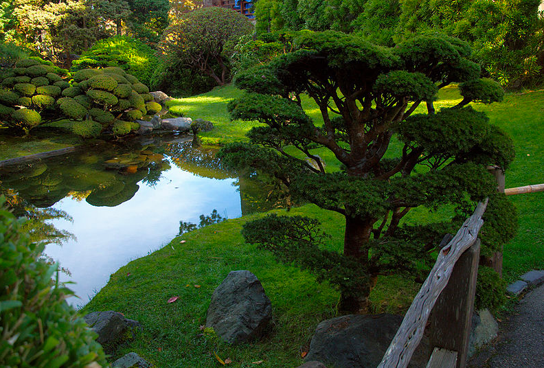 Японский Чайный Сад free 3