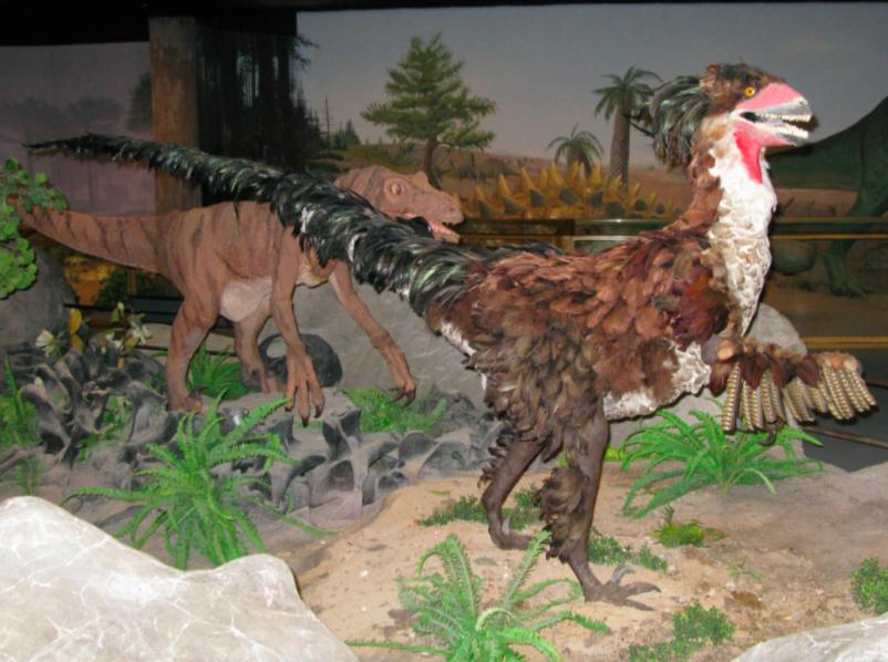 Музей Естествознания Лас-Вегаса 3