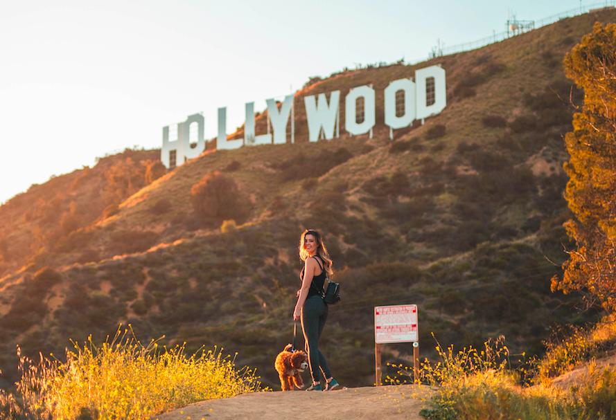 Надпись Голливуд free 7