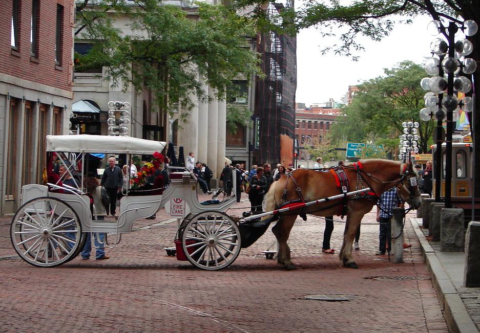 Бостон free 6