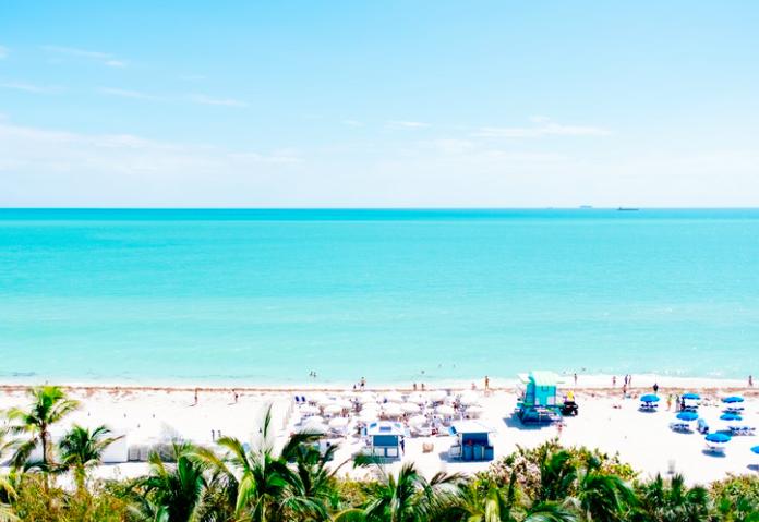 Майами free 7